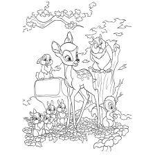 Bambi Da Colorare Disegni Da Stampare Gratis