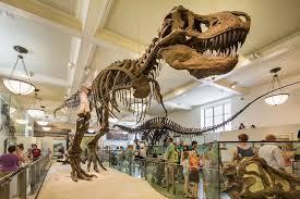 16 destinos jurásicos: tras la huella de los dinosaurios