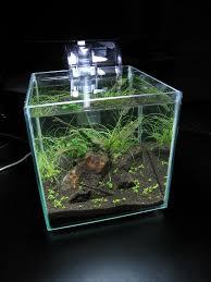 Azoo Aquarium Light Marina Cubus With Azoo Palm Hob Filter Light 12 W 6700k