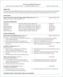 New Nurse Resume Examples Resume Example