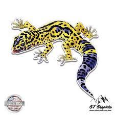 Leopard Gecko Size Chart Amazon Com Leopard Gecko Large Size Vinyl Sticker Decal