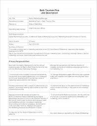 Ambassador Cv Ministry Job Description Template Brand Manager Cv Download