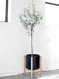 ceramic pot with wooden stand black target australia hd 768 1024