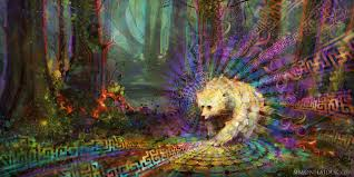 touching spirit bear thing link by lauren aubrey lilly thinglink related images times