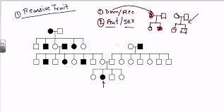 Examples Of Family Pedigree Charts Pedigree Analysis Autosomal Recessive