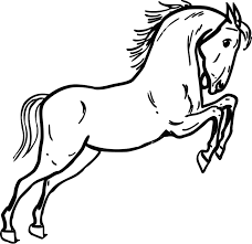 Small Picture Mustang Horse Coloring Pages Coloring Pages Online