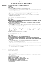 Branch Operations Manager Resume Samples Velvet Jobs Business S