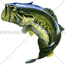 largemouth bass jumping. Brilliant Largemouth Large Mouth Bass Jumping With Largemouth N