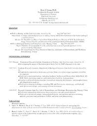 Infantry Resume Examples – Digiart