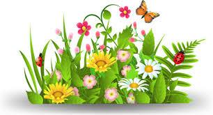 spring flowers gr vector free vector