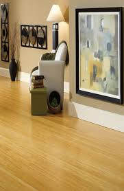 outstanding most eco friendly flooring options pictures design ideas