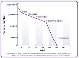 Fertility Age Chart Egg Quality Egg Quantity Ivf What You Need To Know