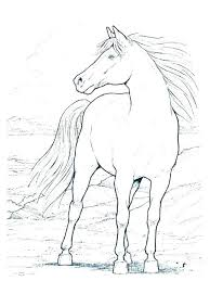 Horses Coloring Pages Wild Horses Coloring Pages Barbie Horse