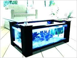 aquarium office. Desk Aquarium Office Fish Tank Tanks Large Amazon Desks Interesting  Reception D Furniture Stores San Francisco .