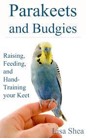 Parakeets And Budgies Raising Feeding And Hand Training Your Keet Ebook By Lisa Shea Rakuten Kobo