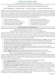 Resume Sample 16 Senior Sales Executive Resume Career