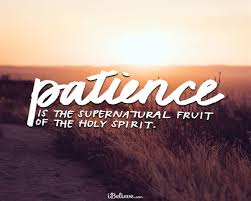 20 Best Bible Verses About Patience Waiting On God Scripture