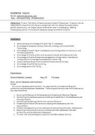 Resume for oracle dba freshers Oracle dba resume ohio