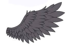 鳥コウモリ翼についての知識と描き方 お絵描きあんてな