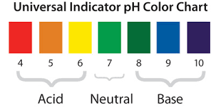 Color Chart For Universal Indicator Ph And Color Change Chapter 6 Chemical Change Middle