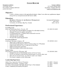 Amazing Sample Resume For Freelance Trainer Contemporary Entry