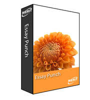 essay punch software that takes students through the steps of takes students through the steps of writing an essay