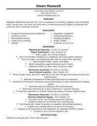 Objective Summary For Resume Mesmerizing Objective Summary For Resume Canreklonecco