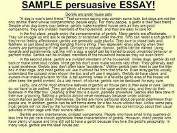 essay about dog my pet short essay on my pet animal cat kids quot descriptive essay about dogsquot anti essays 24 mar 2016