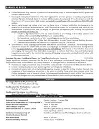 Art Resume Example Design Director In Fine Arts Architecture