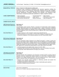 Unique Business Sales Manager Resume Resume Template Restaurant