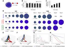 Spatial <b>Pattern</b> Dynamics of <b>3D</b> Stem Cell Loss of Pluripotency via ...