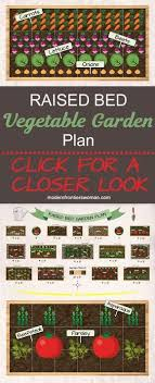 super fruit garden layout companion