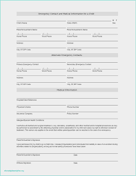 Request For Information Template Free 59 Request For Information Template Model Free