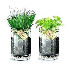 modern indoor herb garden indoor herb garden kit kitchen herb garden kit herb kitchen garden