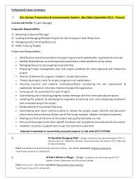 Resume executive summary project manager