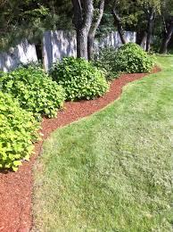 17 Low Maintenance Landscaping Ideas \u2013 Chris and Peyton Lambton ...