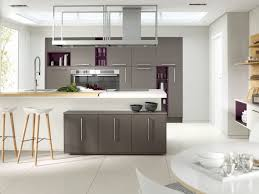 Stainless Steel Kitchen Furniture Grey Kitchen Cabinets Pictures Stainless Steel Cooker Hood Chimney