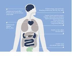 air pollution still harming health across europe european air pollution still harming health across europe