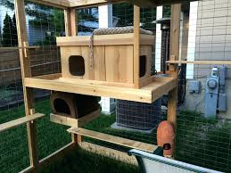 outdoor cat tree house style designs diy ideas