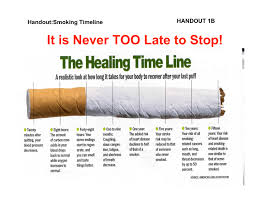 should cigarette smoking be banned argumentative essay docoments should cigarette smoking be banned essay persuasive essays on