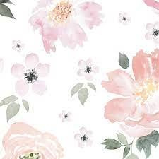 Pastel Flower Wallpapers - Top Free ...