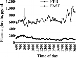 Steer Feeding Chart Plasma Ghrelin Concentrations Of Steers In Exp 1 That Were
