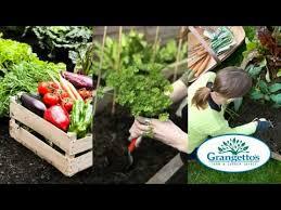 farm and garden supply. Exellent Farm Grangettos Farm And Garden Supply For And 0