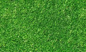 seamless dark grass texture. Seamless Green Grass Texture Dark