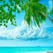 low onvacations wallpaper image