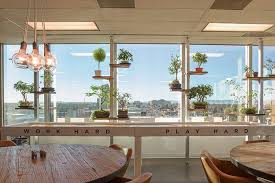 Ceo Office Design Best The Bonsai Wall Our CEO's Fa Travelers Haven Office Photo