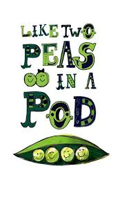 Pods Quote 100 best Playful Peas in a Pod images on Pinterest Baby shower 11