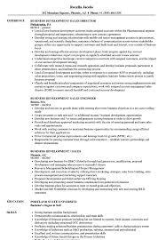 Sample Resume Sales Business Development Business