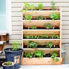 vertical herb garden buildsomething com