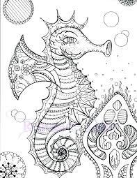 Sea Horse Coloring Pages Seahorse Seahorse Coloring Page Seahorse